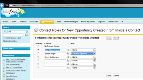 Contact Roles - Adding a Role to a Default Account Contact