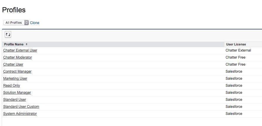 Profiles ~ Salesforce - Enterprise Edition